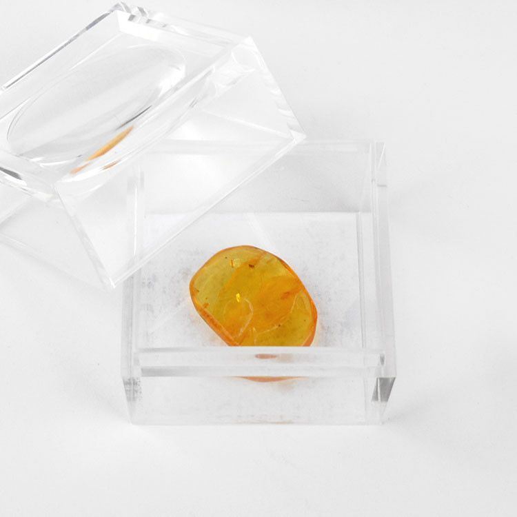 Small Amber Nugget for Collectors