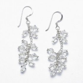 Clear Crystal and Silver Earrings