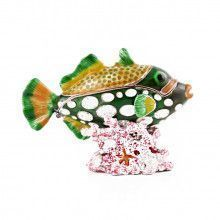 Fish Hiding in Coral Trinket Box
