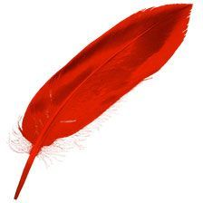 Red Feather from the Firebird